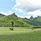 Die reizvolle Bergwelt von Khon San, Provinz Chaiyaphum, Thailand