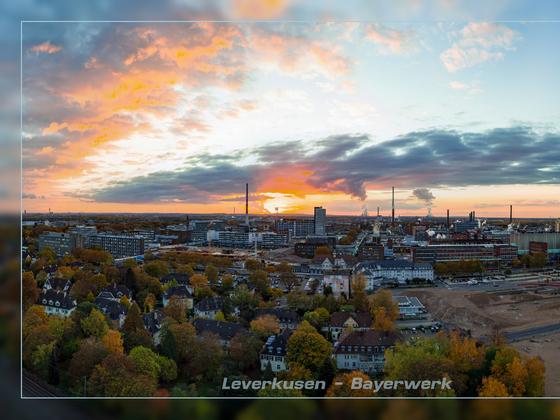 Bayerwerk - Leverkusen