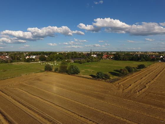 Köln-Widdersdorf nach der Ernte